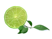 Fresh lime isolated on white background Stock Photos
