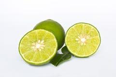 Fresh lime Stock Photo