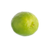 Fresh lime isolated on a white background.  Stock Photo