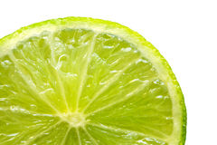 Fresh lime isolated on white background. Stock Images