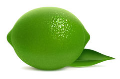 Fresh lime with leaf Royalty Free Stock Photo