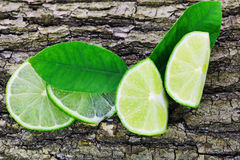Fresh lime with leaf on a bark of tree background Stock Photo