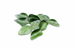 Fresh lime leaves. Fresh limes isolated on a white background royalty free stock photography