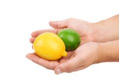 Fresh lime and lemon on hands isolated Stock Image