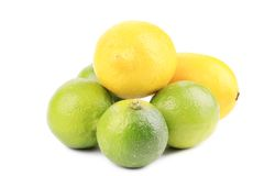 Fresh lime and lemon isolated on white. Royalty Free Stock Photo