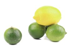 Fresh lime and lemon isolated on white. Royalty Free Stock Photography
