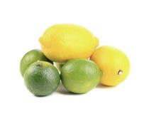 Fresh lime and lemon isolated on white. Royalty Free Stock Photo