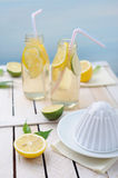 Fresh lime and lemon, squeezer and two glasses of lemonade on the table Stock Photography