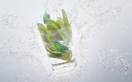 Fresh lime or lemon with water splash Royalty Free Stock Photography