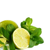 Fresh lime and mint. Stock Photography