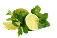 Fresh lime and mint. Stock Images