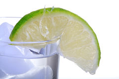 Fresh lime slice Stock Images