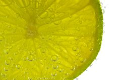 Fresh Lime Slice Royalty Free Stock Photo