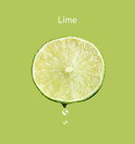 Fresh lime Royalty Free Stock Photos