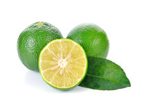 Fresh lime and slice Royalty Free Stock Images