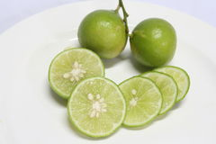 Fresh lime sliced Royalty Free Stock Photos