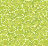 Fresh lime slices as fruit background Stock Photos