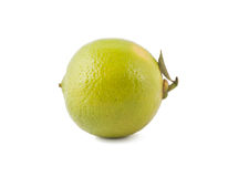Fresh lime with small leaf Royalty Free Stock Image