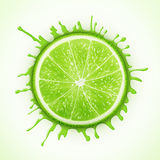 Fresh lime with splash vector illustration