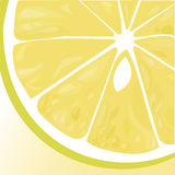 Fresh lime vector Stock Photo