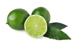 Fresh limes Stock Images