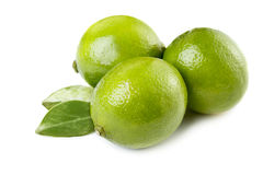 Fresh limes. Three fresh whole limes with leaves isolated on white Stock Photos