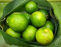 Fresh Limes In Banana Leaf Packaging Stock Image