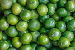 Fresh limes close up background. Healthy food. Harvest in the market, Thailand. Fresh limes close up background. Healthy food. Harvest in the Bangkok market Stock Photos