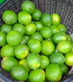Fresh limes closeup Stock Images
