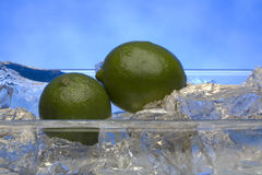 Fresh limes on crystal ice cubes Stock Photography