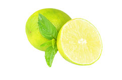 Fresh limes Isolated on white Royalty Free Stock Photography
