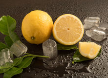 Fresh Limes with leaves and ice cubes Royalty Free Stock Image