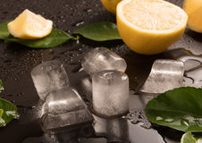 Fresh Limes with leaves and ice cubes Stock Photos