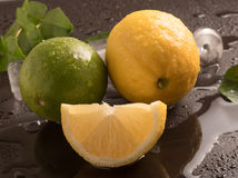 Fresh Limes with leaves and ice cubes Royalty Free Stock Images