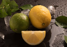 Fresh Limes with leaves and ice cubes On the wet black background. Stock Image