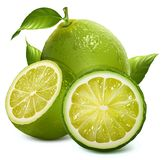 Fresh limes with leaves Royalty Free Stock Photo