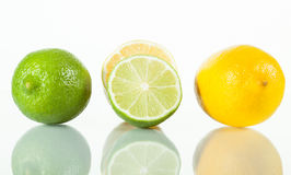 Fresh limes and lemons Stock Photography