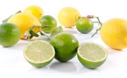 Fresh limes and lemons Stock Images