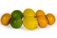 Fresh limes, lemons and tangerins Stock Image