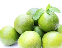 Fresh limes with mint Royalty Free Stock Photography