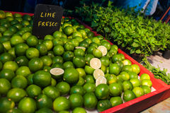 Fresh limes and mint Royalty Free Stock Photo
