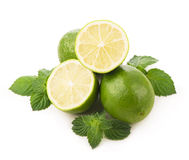 Fresh limes, mint leaves Royalty Free Stock Photo