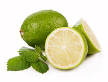 Fresh limes, mint leaves Royalty Free Stock Photography