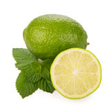 Fresh limes, mint leaves Stock Images