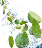 Fresh limes in motion royalty free stock photography