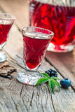 Fresh liqueur with alcohol and berry fruits Stock Images