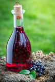 Fresh liqueur in a bottle with blueberries and alcohol Royalty Free Stock Images
