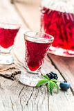 Fresh liqueur made of alcohol and berry fruits Stock Image