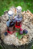 Fresh liqueur made of blackberries and alcohol Stock Images
