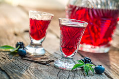 Fresh liquor with berry fruits and alcohol Stock Image